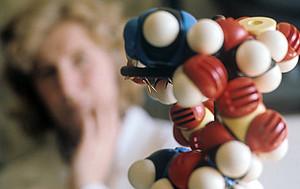 Ученые научились хранить сонеты Шекспира на молекулах ДНК