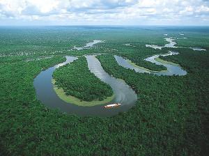 10 самых длинных рек