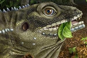 Ящерицу назвали в честь Джима Моррисона