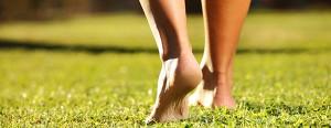 В Германии открылся парк для прогулок босиком