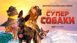 «СУПЕРСОБАКИ» в формате IMAX